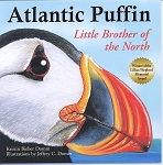 Atlantic Puffin - Little Brother of the North - Kristin Bieber Domm
