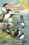 Birds of Newfoundland: Field Guide - Warkentin & Newton