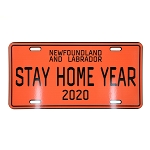 Stay Home Year 2020 Licence Plate