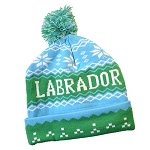 Toque - Labrador - Light Blue w Pom Pom