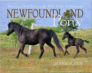 The Long Haul: Tracing the Path of the Newfoundland Pony - Dennis Flynn