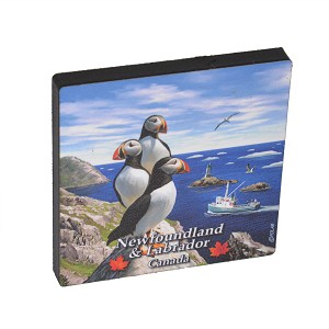 Magnet - Scenic Puffin - Newfoundland & Labrador - 2.5' x 2.5'