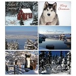 Box - Assorted 12 pack cards - Christmas