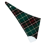 Baby NL Tartan Bib with Teething Band
