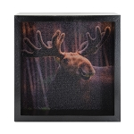 Young Moose Light Box - Black Frame