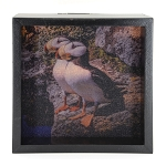 Puffin Light Box - Black Frame