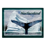 Magnet - Newfoundland and Labrador Iceberg and Whale Tail Photo