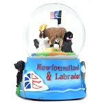 Snow Globe NL Icons