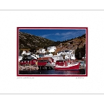 Matted 8 x 10 Photo - Petty Harbour