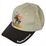 Newfoundland  with Moose - Cap