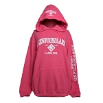 Youth Hoodie - Newfoundland Labrador - Est 1497 - 4 - Icons - Pink