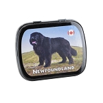 Newfoundland Dog Tin of Mint Candies